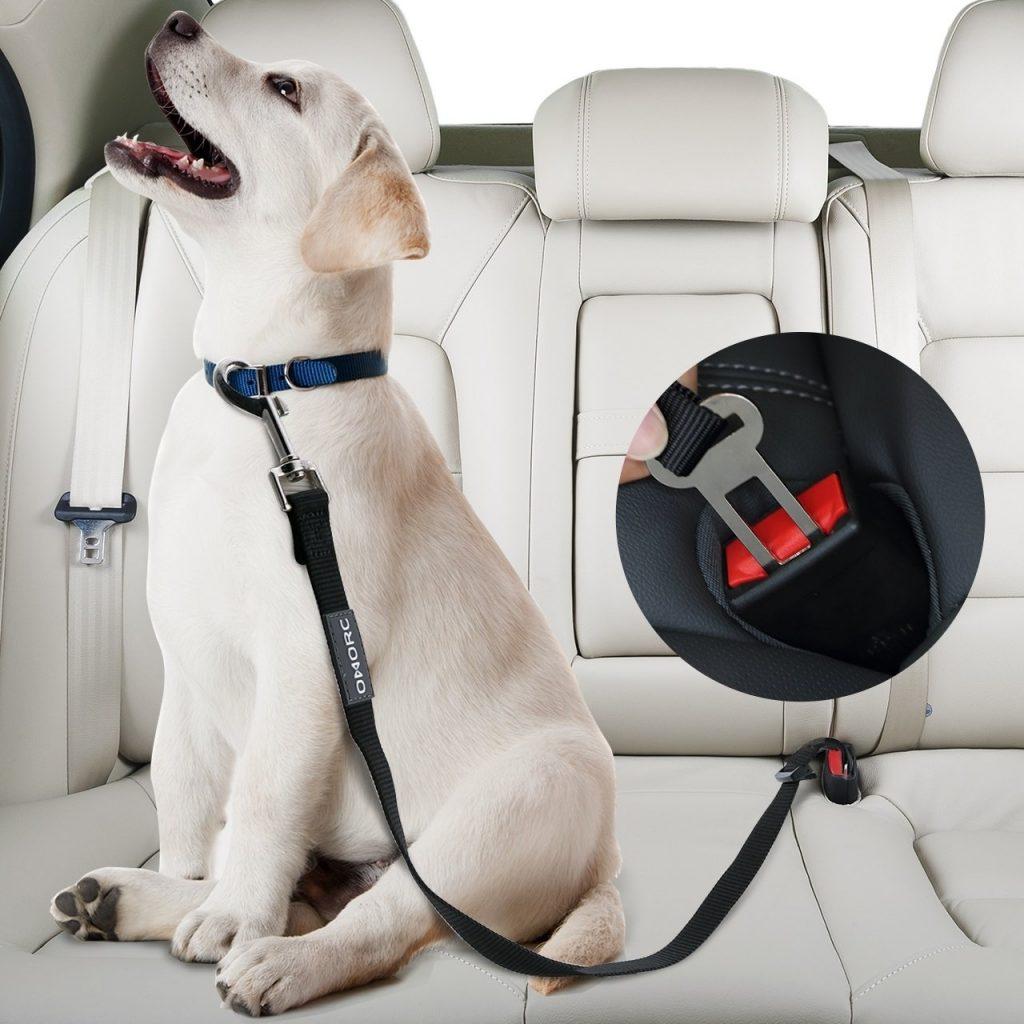 Pawsafe Seatbelt Review.jpeg